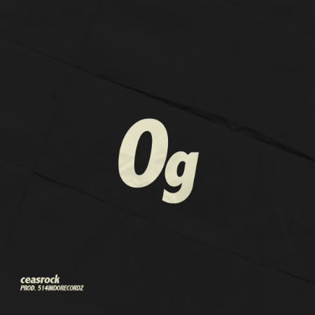 0g_2 (1)