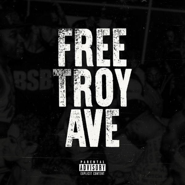 00 - Troy_Ave_Dope_Boy_Troy_Real_Vs_Fake_Savage_Editi-front-large